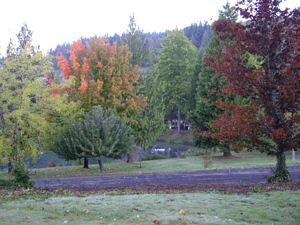 Loch Lolly Photos- Fall 2004